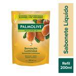 4686781f0426a8a48c2a689ba8325b94_palmolive-sabonete-liquido-palmolive-naturals-sensacao-luminosa-refil-200ml_lett_2